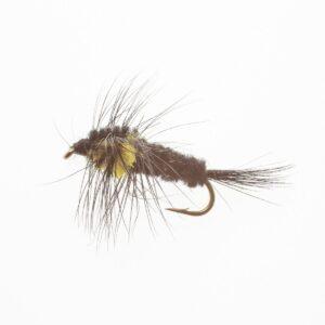 Montana-gul-FL0006-12-Onlineflugor